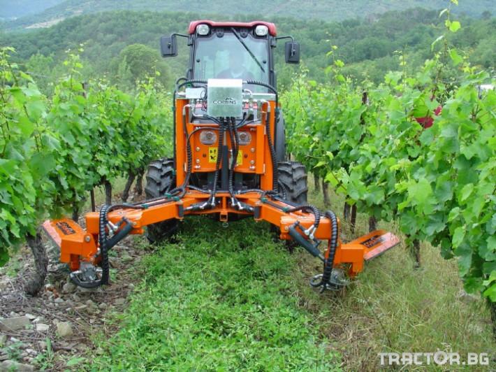 Машини за лозя / овошки Машина за обработка на Лозови насаждения CORBINS 0 - Трактор БГ