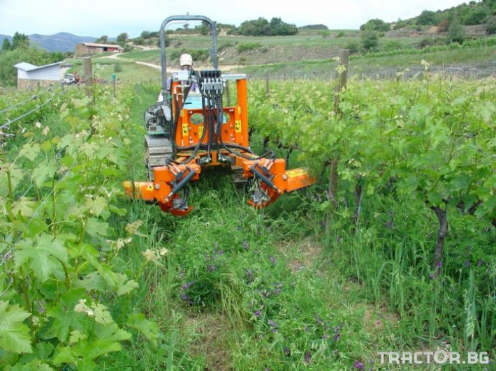 Машини за лозя / овошки Машина за обработка на Лозови насаждения CORBINS 1 - Трактор БГ